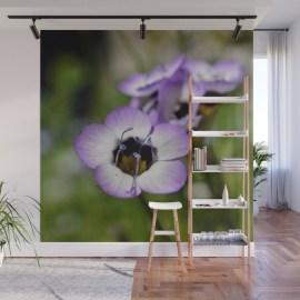 birds-eye-wildflower-up-close-wall-murals