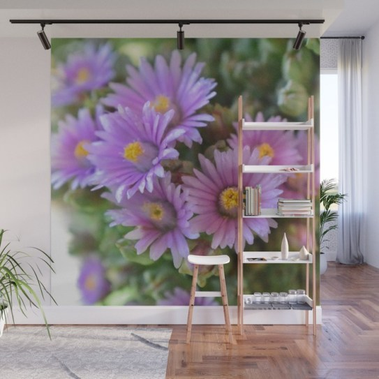 blooming-succulents1375848-wall-murals
