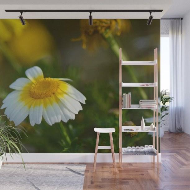 daisy1088953-wall-murals