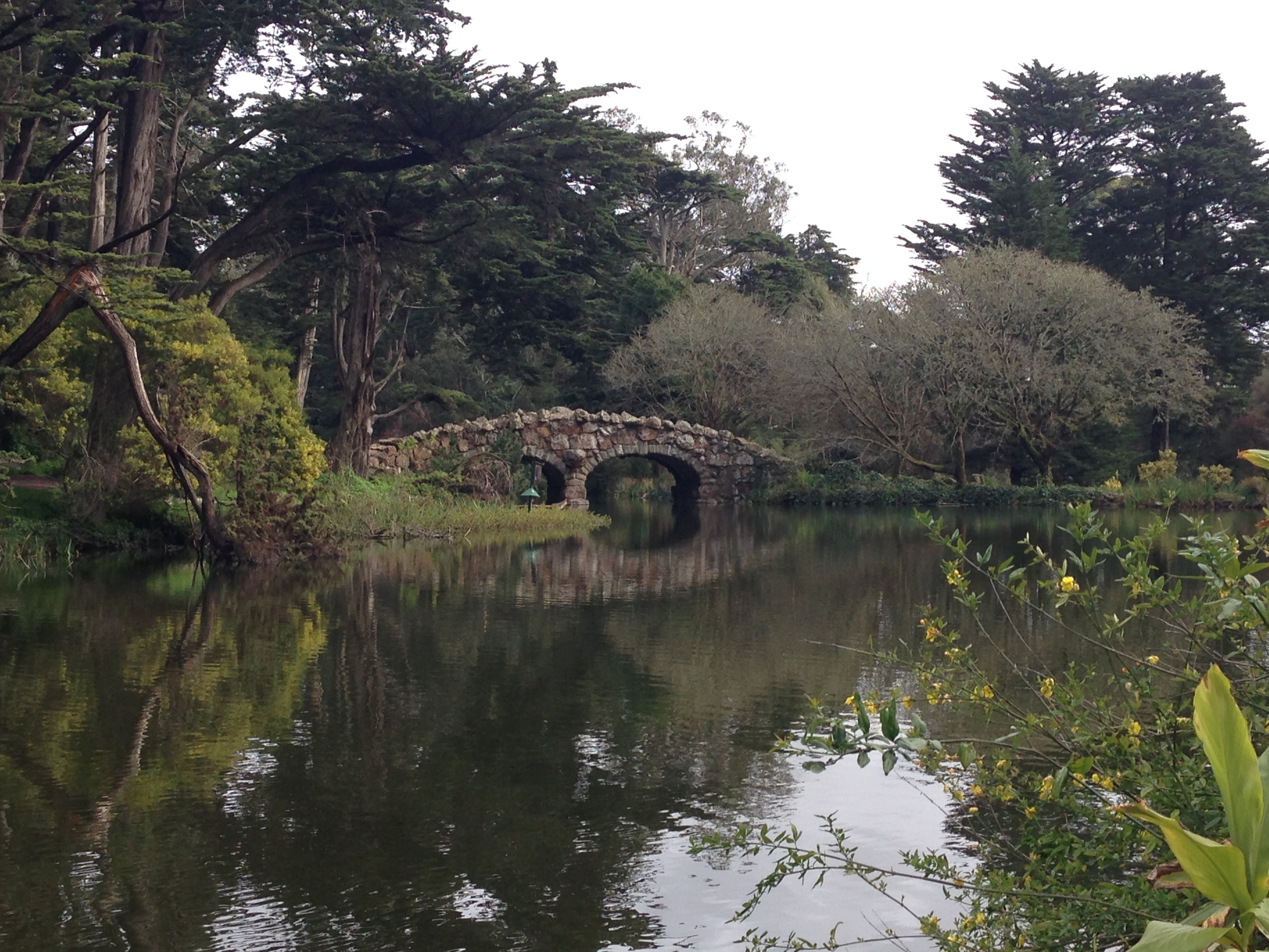 Adventures In Golden Gate Park's Stow Lake